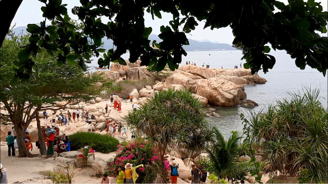 Ngắm san hô mà không cần lặn biển tại Hòn Chồng – Nha Trang